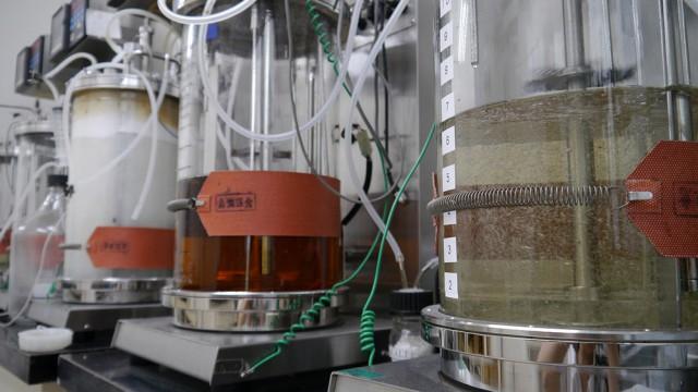 発酵管理部門